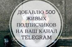 600 подписчиков на канал Телеграм. Живые исполнители 6 - kwork.ru