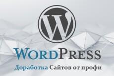 Установлю и настрою сайт на WordPress 9 - kwork.ru