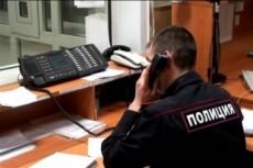Заполню заявление на выдачу загранпаспорта 3 - kwork.ru