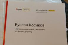 Настрою Яндекс Директ. Сертифицированный специалист 12 - kwork.ru