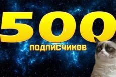 300 подписчиков на паблик Вконтакте, без ботов и программ 18 - kwork.ru