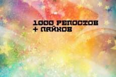 1000 Репостов +1000 Лайков ВКонтакте, комплект 11 - kwork.ru