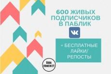 Подписчики в группу, паблик. Качество и Критерии 111 штук Вконтакте 22 - kwork.ru