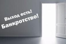 Составлю заявление на банкротство 21 - kwork.ru