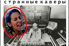 Спою песню не сладким голосом 17 - kwork.ru