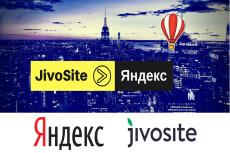 Подключу онлайн кассу на сайт-закон 54-фз через яндекс.деньги + атол 16 - kwork.ru