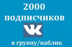 200 участников по критериям в группу Вконтакте 16 - kwork.ru