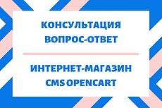 CMS Opencart. Консультация магазина 14 - kwork.ru