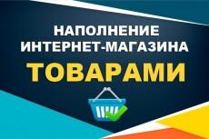 Наполнение интернет магазинов товарами 7 - kwork.ru