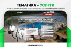 Скопировать Landing page, одностраничный сайт, посадочную страницу 231 - kwork.ru