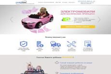 Создание Landing Page на Wordpress по ключ с уникальным дизайном 6 - kwork.ru