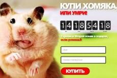 Составлю семантическое ядро для сайта или контекстной рекламы 4 - kwork.ru