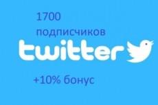 1700 подписчиков в ваш аккаунт Twitter 18 - kwork.ru