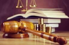 Первичная оценка документов по судебному делу, составление иска 15 - kwork.ru