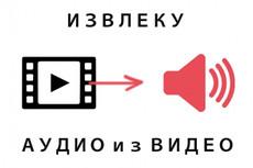 Из видео в аудио 5 - kwork.ru