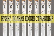 Скриншот страницы сайта или отдельной его части 22 - kwork.ru