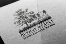 Разработка прототипа landing page 10 - kwork.ru