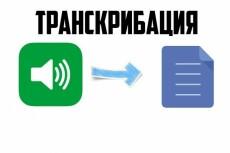 Транскрибация 50 минут аудио или видео в текст 22 - kwork.ru
