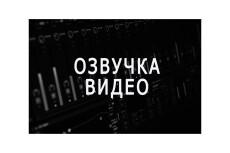 Напишу intro outro аудиозапись для видео 5 - kwork.ru