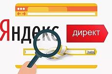 Настройка Яндекс.Директ под ключ до 150 фраз на поиске и РСЯ 8 - kwork.ru