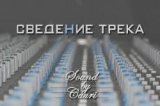Тюнинг  вокала одного трека до 4 мин 13 - kwork.ru