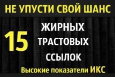 20 + 20 жирные вечные ссылки 40 трастовых сайтов с ИКС выше 1000 11 - kwork.ru