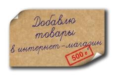 Наполнение интернет-магазина товарами 20 - kwork.ru