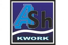 Дизайн логотипа (2 варианта) 16 - kwork.ru