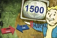 """20 """"жирных"""" вечных ссылок, средний Тиц > 3300, качественные доноры 13 - kwork.ru"""