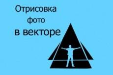 преобразую в вектор любое изображение 9 - kwork.ru
