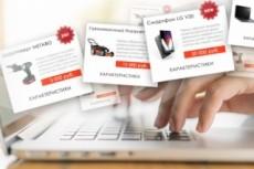 Уникальные карточки товаров для Вашего интернет-магазина, 10 шт 28 - kwork.ru