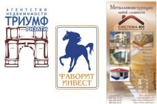 нарисую продающую инфографику в виде иконок для сайта 40 - kwork.ru