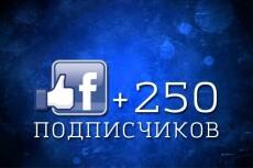 Оптимизация вашего сайта на Wordpress 8 - kwork.ru