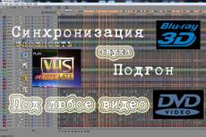 Обработка аудио, импорт звуковой дорожки из видео 3 - kwork.ru