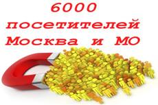 Увеличение посещаемости Вашего ресурса в течение месяца 38 - kwork.ru