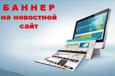 Размещу Ваш баннер на новостном сайте на 1 месяц 3 - kwork.ru