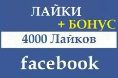 Настройка Яндекс. Директ. Настройка на результат 31 - kwork.ru