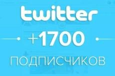 1700 подписчиков в ваш аккаунт Twitter 21 - kwork.ru