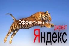 Настрою Яндекс Директ 7 - kwork.ru