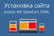 Регистрация хостинга , подбор домена и установка CMS 6 - kwork.ru