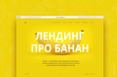 Копия лендинга под ключ 24 - kwork.ru