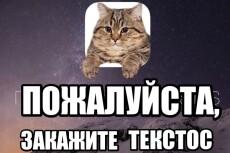 Перевод с английского на русский 6 - kwork.ru