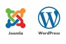 Помогу с сайтом на Wordpress, Diafan CMS 30 - kwork.ru