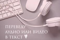 Переводу текст из аудио в текст 23 - kwork.ru