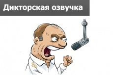 Напишу музыку, озвучку 4 - kwork.ru