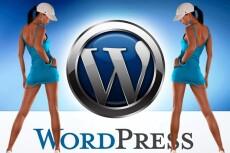 Настройка вашего сайта на wordpress 25 - kwork.ru