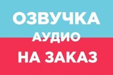 Аудиоролик до 1 минуты 23 - kwork.ru