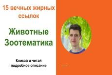 Поставлю 10 ссылок на разных каналах YouTube 20 - kwork.ru