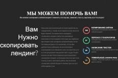 Аудит вашего лендинга 3 - kwork.ru