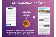 Наполнение сайта. Перенос контента 5 - kwork.ru